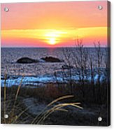 Sunset Beauty Acrylic Print