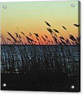 Sunset Colors Island Beach State Park Nj Acrylic Print