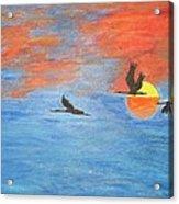 Sunset Cranes Acrylic Print