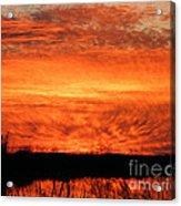 Sunset Detail  Acrylic Print