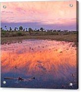 Everglades Afterglow Acrylic Print
