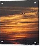 Sunset Flyby Fulton Texas Acrylic Print
