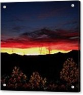 Sunset Forest Blue Acrylic Print