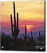 Sunset Glory Acrylic Print