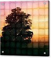 Sunset Grid 2 Acrylic Print