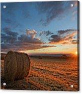 Sunset Hay Acrylic Print