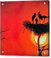 Sunset Home Acrylic Print