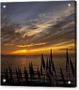 Sunset Hwy. 1calif. Acrylic Print