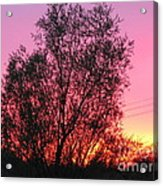Sunset In April- Silute Lithuania Acrylic Print