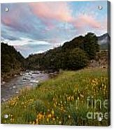 Sunset In Cobb Valley Of Kahurangi Np Of New Zealand Acrylic Print