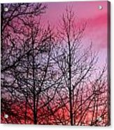 sunset in late February Acrylic Print