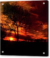 Sunset In The Field Acrylic Print