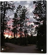 Sunset In The Pines Acrylic Print