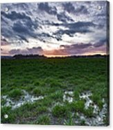 Sunset In The Swamp Acrylic Print