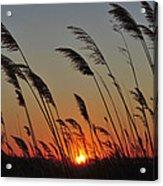 Sunset Island Beach State Park Nj Acrylic Print