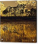 Sunset Jd Acrylic Print