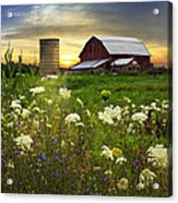 Sunset Lace Pastures Acrylic Print by Debra and Dave Vanderlaan