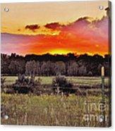 Sunset Meadow Acrylic Print
