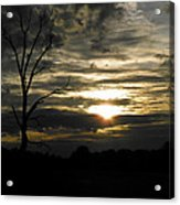 Sunset Of Life Acrylic Print