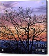 Sunset On Tanners Ridge Acrylic Print