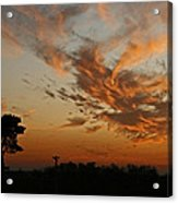 Sunset Over Blueberry Field Acrylic Print