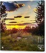Sunset Over Field Of  Flowers Acrylic Print