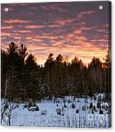 Sunset Over The Winter Forest Acrylic Print