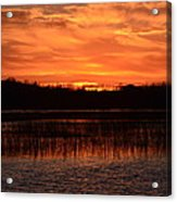 Sunset Over Tiny Marsh Acrylic Print
