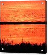 Sunset Panarama Lacassine Acrylic Print