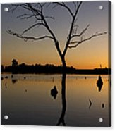 Sunset Riverlands West Alton Mo Portrait Dsc06670 Acrylic Print