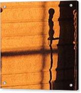 Sunset Shadow Indoor Acrylic Print