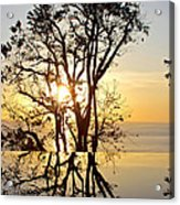 Sunset Silhouette And Reflections Acrylic Print