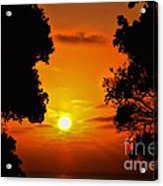 Sunset Silhouette By Diana Sainz Acrylic Print