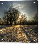 Sunset Snow Trees Acrylic Print