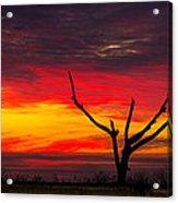 Sunset Solitude Acrylic Print