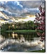 Sunset Southern  Acrylic Print by Chuck Kuhn