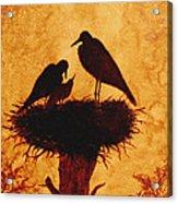Sunset Stork Family Silhouettes Acrylic Print