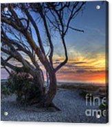 Sunset Swing Acrylic Print