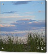 Sunset Through Grass Acrylic Print