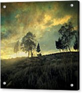 Sunset Trip II Acrylic Print