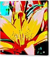 Sunshine And Flowers Acrylic Print