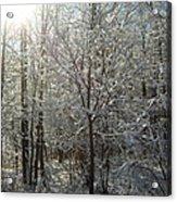 Sunshine And Snow Acrylic Print