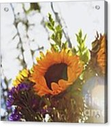 Sunshine And Sunflowers Acrylic Print