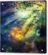 Sunshine Forest Acrylic Print