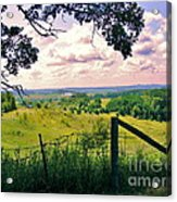 Sunshine On The Meadow Acrylic Print