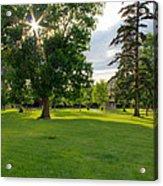 Sunshine Through The Trees Acrylic Print