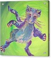 Super Kitty Acrylic Print