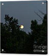 Super Moon 2013 Acrylic Print
