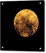 Supermoon 2 Acrylic Print