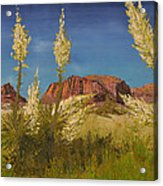 Superstition Mountain Acrylic Print